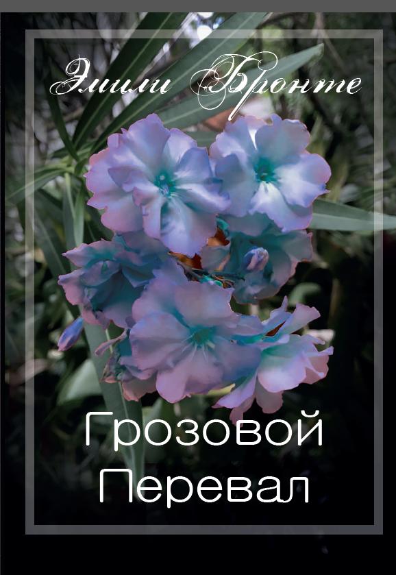 Грозовой перевал бронте эмили обложка бумажная книга